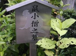 20170811鼠小僧の墓.png