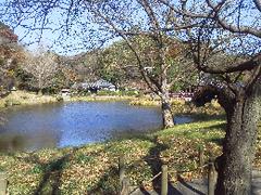 20161209お池.png