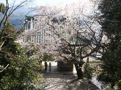 20170416松尾寺.png