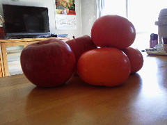 柿とリンゴ.png